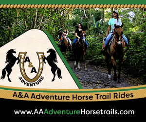 A&A Adventure Horse Trail Rides - Horseback Riding Services in Fort Lauderdale