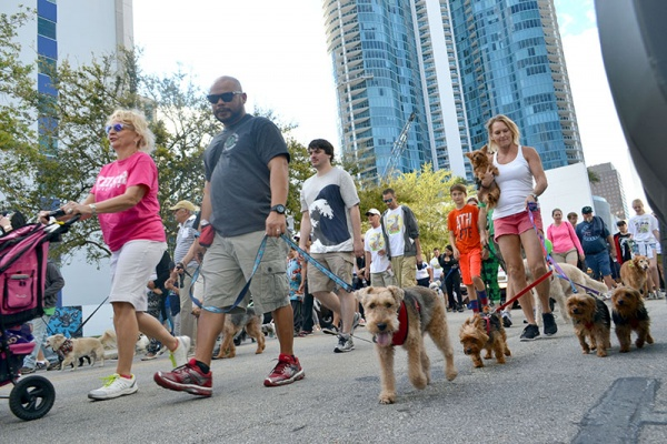 28th Annual Walk for the Animals  Benefitting the Humane Society of Broward County